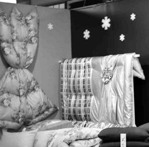 羽ぶとん開発当初(昭和30年代)の展示会