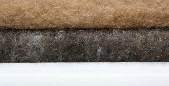天然毛積層断面