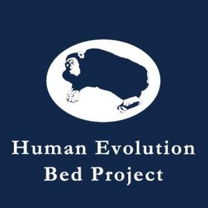 人類進化ベッド、東海エリア初公開
