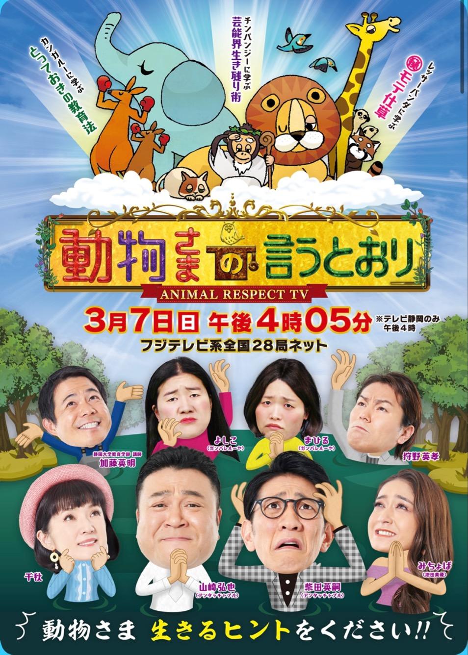 【メディア情報】3/7 16時5分~ テレビ静岡「動物さまの言うとおり」にて人類進化ベッドが取り上げられます。